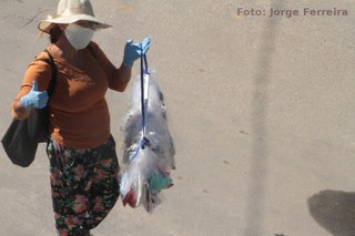 A pandemia no bairro Botafogo, em Nova Iguaçu-RJ