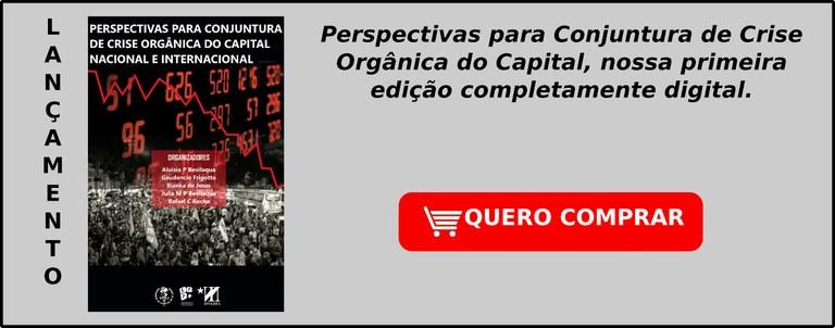 Perspectivas para Conjuntura de Crise OrgAC/nica do Capital: Nacional e Internacional